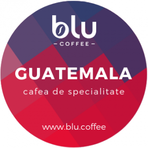 Guatemala Finca Bourbon - Organic